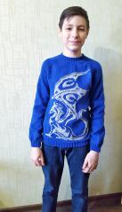 "фотография Джемпер ""Draco"""