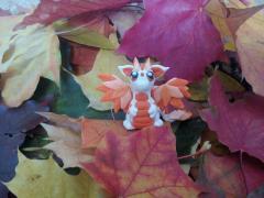 фото Осенний дракончик Аден